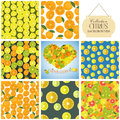 Collection of seamless backgrounds and heart on the topic of cit citrus illustration Royalty Free Stock Photos