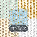 Collection of seamless backgrounds on the topic of pets dogs