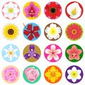 Collection set beautiful flowers useful as icon illustration background floral theme Stock Photo