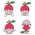 Collection set lychee cartoon character style
