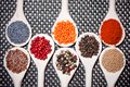 Collection set of spices with pepper corns legumes peas lentils poppy salt and pepper Royalty Free Stock Photos