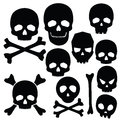 Collection of skulls isolated on white illustration Stock Image