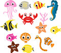 Collection of small tropical fish Stock Image