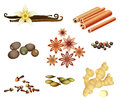 Collection of spices vanilla pods cinnamon sticks nutmeg seeds star anise black peppercorn dried cloves cardamom and ginger root Stock Image