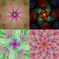 Collection of spiral fractals Royalty Free Stock Photo