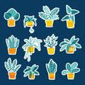 Collection of stickers with folliage houseplants, hand drawn elements.