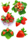 Collection of strawberries on white. Isolated Royalty Free Stock Photography