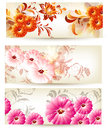 Collection of three floral cards with flowers Stock Images
