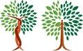 Collection tree logo Royalty Free Stock Photo