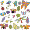 Collection of vector bugs, butterfly, leaves and flowers
