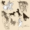 Collection of vector detailed horses for design set hand drawn Royalty Free Stock Images