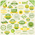 Collection Vector Organic Food, Eco, Bio Labels and Elements. Logo elements for Food and Drink. Royalty Free Stock Photo