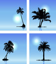 Collection of vector palm tree silhouettes on blue sky Stock Photo