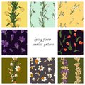Collection of 8 vector seamless color patterns with spring flowers.