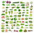Collection of vegetable isolated on white background Royalty Free Stock Image