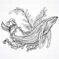 Collection of whale, marine plants, leaves and seaweed. Vintage set of black and white hand drawn marine life.