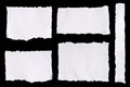 Collection of white ripped pieces of paper on black background Royalty Free Stock Photo