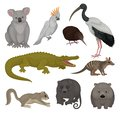 Set of wild Australian animals and birds. Fauna theme. Detailed vector elements for poster of zoo or children book Royalty Free Stock Photo
