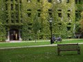College building ivy covered gothic style Stock Photography
