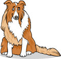 Collie purebred dog cartoon illustration Stock Photo
