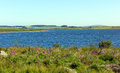 Colliford lake bodmin cornwall england uk reservoir moor Royalty Free Stock Images