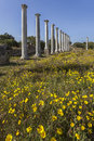 Colonnade in ruins of salamis ancient gymnasium north cyprus Royalty Free Stock Photos