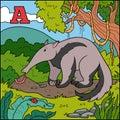 Color alphabet for children: letter A (anteater)