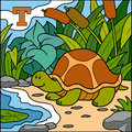 Color alphabet for children: letter T (turtle)