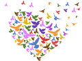 Color birds flying with heart Royalty Free Stock Photo