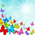 Color butterflies on sunny background blue Stock Image