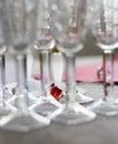 Color entre los vidrios de vino Imagen de archivo libre de regalías