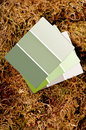 Color paint chips on a moss background Royalty Free Stock Images