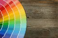 Color Palette On The Wooden Ba...