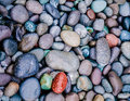 Color river stones background