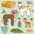 Color set of cute farm animals and objects, vector family cow Royalty Free Stock Photo