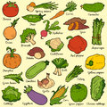 Color set with vegetables, vector cartoon stickers Royalty Free Stock Photo