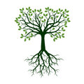 Color Tree with Roots. Vector Illustration.