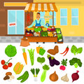 Color vegetables icons set. Vegetables shop color illustartion for web and mobile design Royalty Free Stock Photo