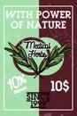 Color vintage medical plants herbs banner