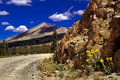 Colorado Mountain Pass Road and Wildflowers Stock Photo
