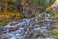 Colorado Mountain Stream in Autumn Royalty Free Stock Photo