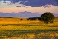 A Colorado Plains Sunrise Royalty Free Stock Photo