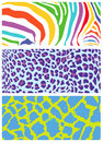 Colored animal skin and fur patterns. Royalty Free Stock Photo