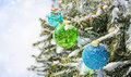 Colored balls on the Christmas tree Royalty Free Stock Photos