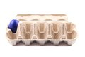 Colored blue egg in carton. Royalty Free Stock Photo