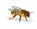 Colored cartoon honey bee, whole body Royalty Free Stock Photo