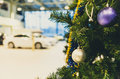 Colored christmas balls on branch tree in showroom with a car in the background Royalty Free Stock Photos