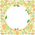 Colored citrus fruit background, vector