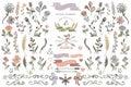 Colored Doodles borders,ribbons,floral decor element.eps