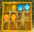 Colored Easter Eggs Stock Photo